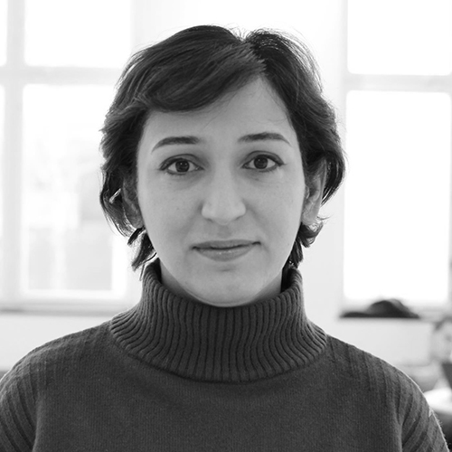 Roya Meydani